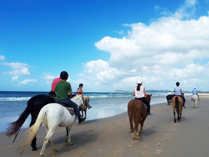 horse riding lennox head